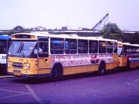 GSM 1361